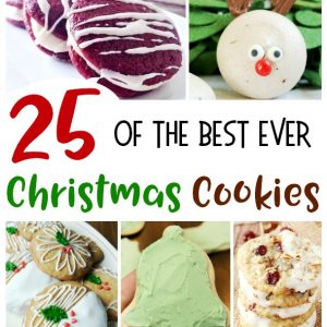 25 of the Best Ever Christmas Cookies
